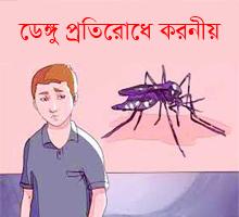 What to do to prevent Dengue